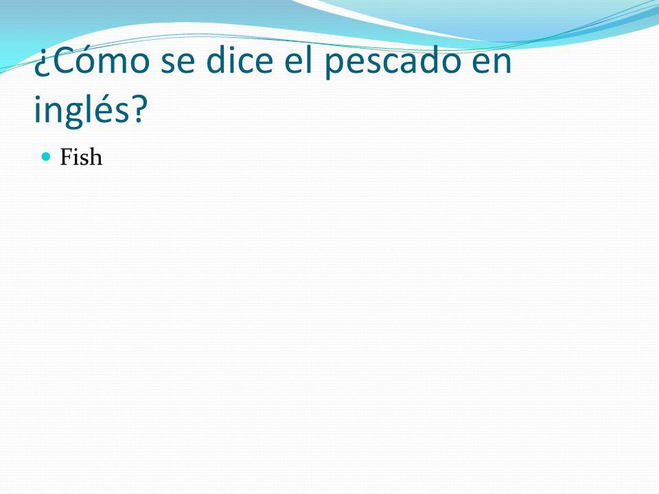 ¿Cómo se dice cheese en español? El queso
