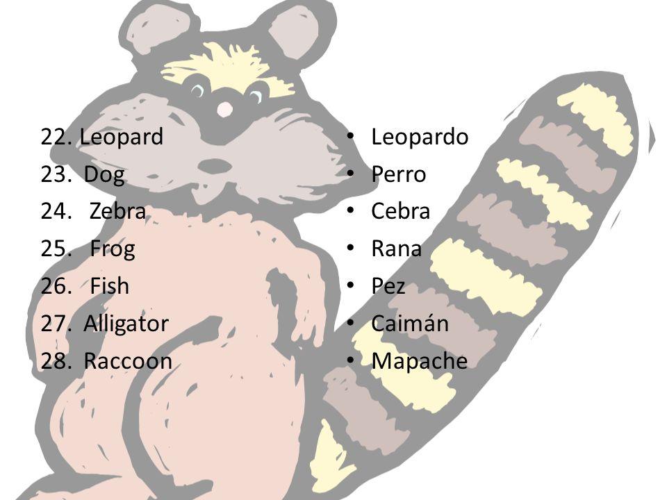 22. Leopard 23. Dog 24. Zebra 25. Frog 26. Fish 27. Alligator 28. Raccoon Leopardo Perro Cebra Rana Pez Caimán Mapache