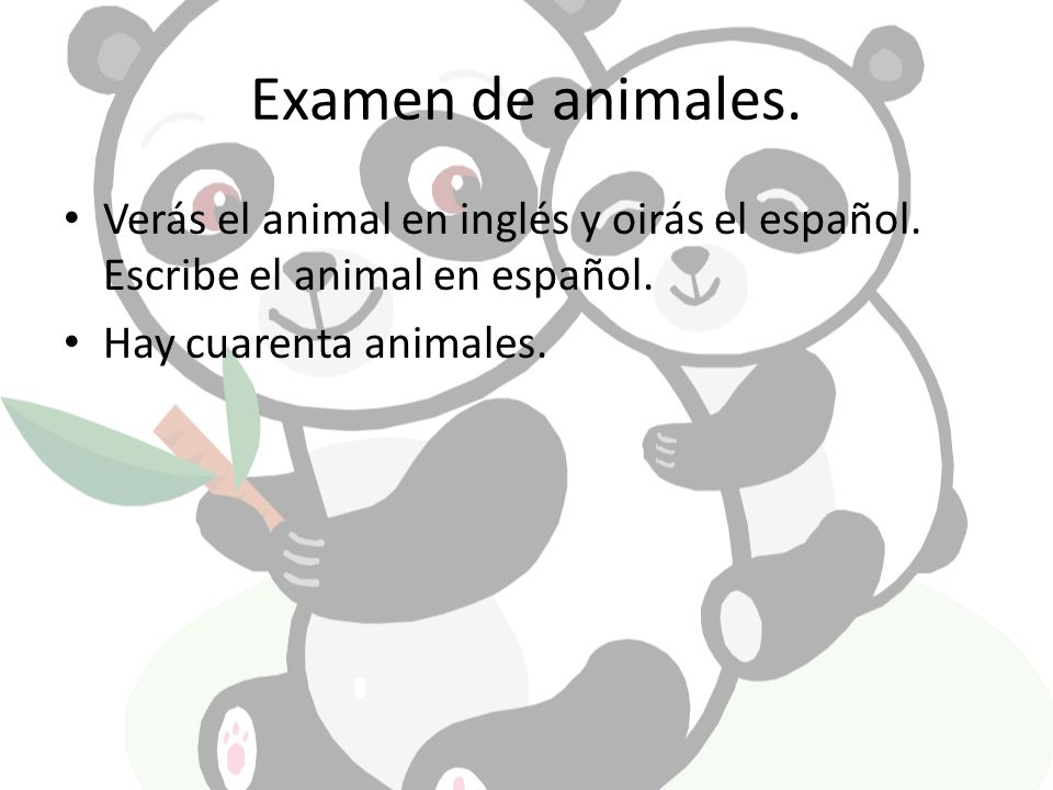 Examen de animales. Verás el animal en inglés y oirás el español. Escribe el animal en español. Hay cuarenta animales.