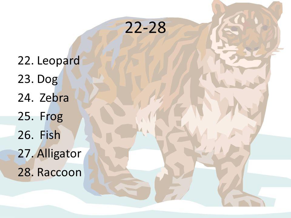 22-28 22. Leopard 23. Dog 24. Zebra 25. Frog 26. Fish 27. Alligator 28. Raccoon