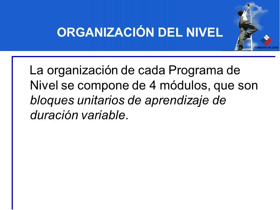 ORGANIZACIÓN DEL NIVEL La organización de cada Programa de Nivel se compone de 4 módulos, que son bloques unitarios de aprendizaje de duración variabl