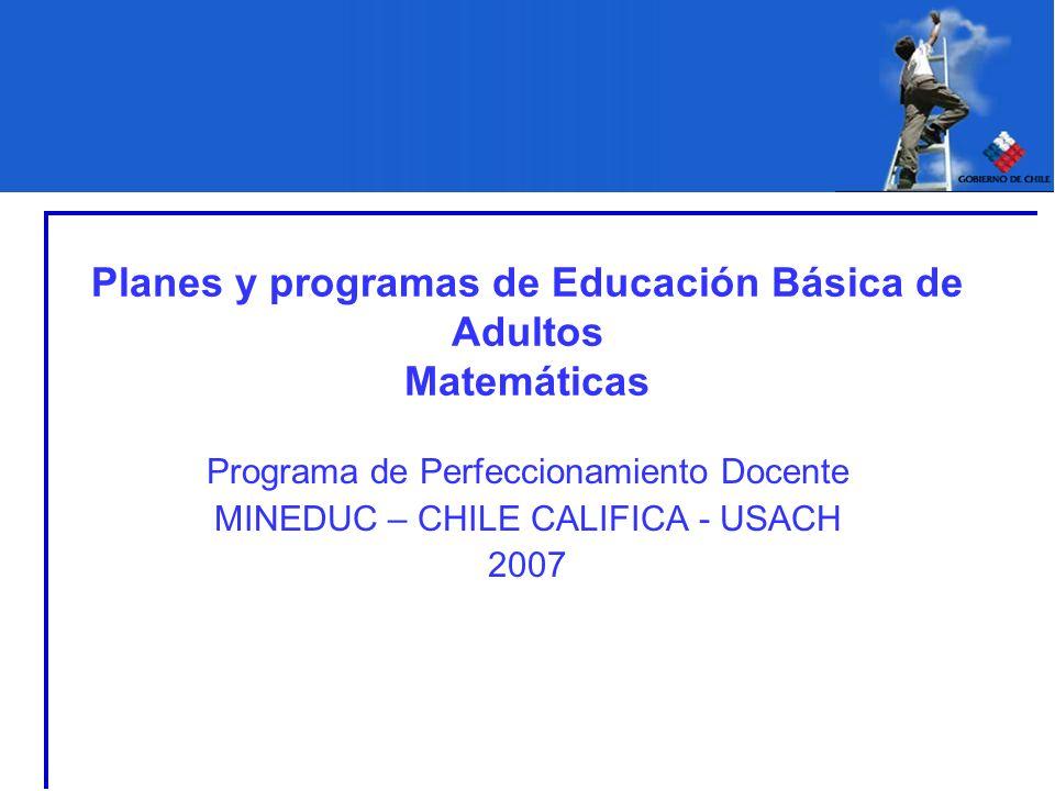Planes y programas de Educación Básica de Adultos Matemáticas Programa de Perfeccionamiento Docente MINEDUC – CHILE CALIFICA - USACH 2007