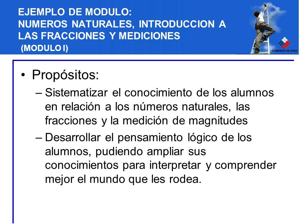 EJEMPLO DE MODULO: NUMEROS NATURALES, INTRODUCCION A LAS FRACCIONES Y MEDICIONES (MODULO I) Propósitos: –Sistematizar el conocimiento de los alumnos e
