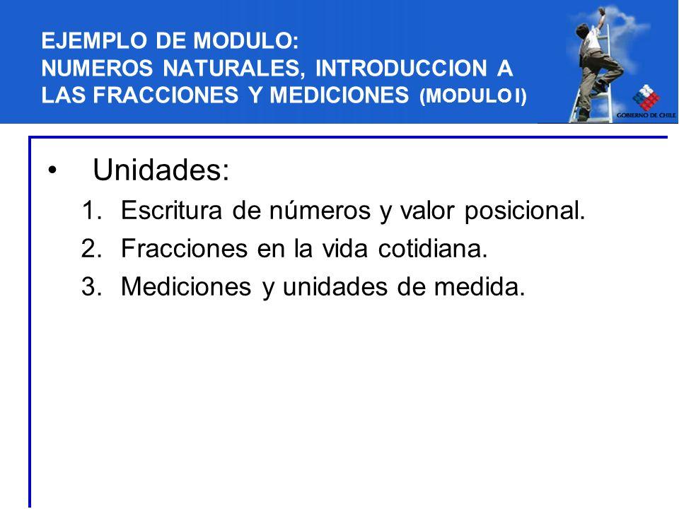 EJEMPLO DE MODULO: NUMEROS NATURALES, INTRODUCCION A LAS FRACCIONES Y MEDICIONES (MODULO I) Unidades: 1.Escritura de números y valor posicional. 2.Fra