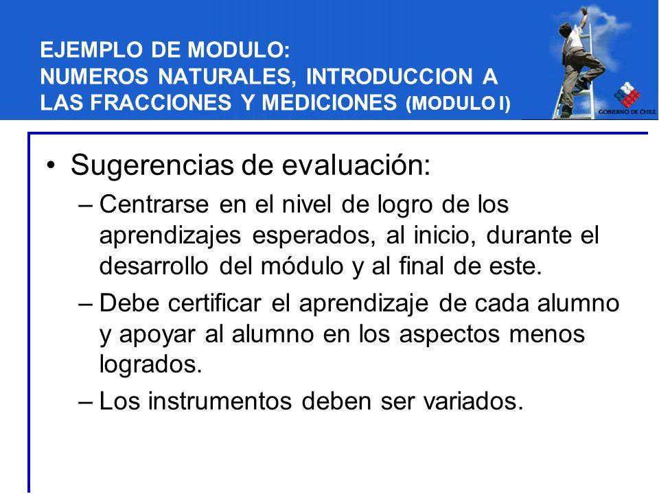 EJEMPLO DE MODULO: NUMEROS NATURALES, INTRODUCCION A LAS FRACCIONES Y MEDICIONES (MODULO I) Sugerencias de evaluación: –Centrarse en el nivel de logro