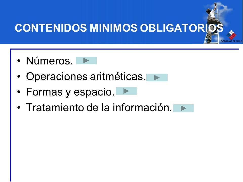 CONTENIDOS MINIMOS OBLIGATORIOS Números. Operaciones aritméticas. Formas y espacio. Tratamiento de la información.