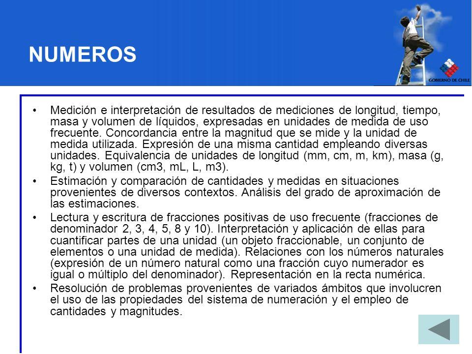 EJEMPLO DE MODULO: NUMEROS NATURALES, INTRODUCCION A LAS FRACCIONES Y MEDICIONES (MODULO I) Unidades: 1.Escritura de números y valor posicional.