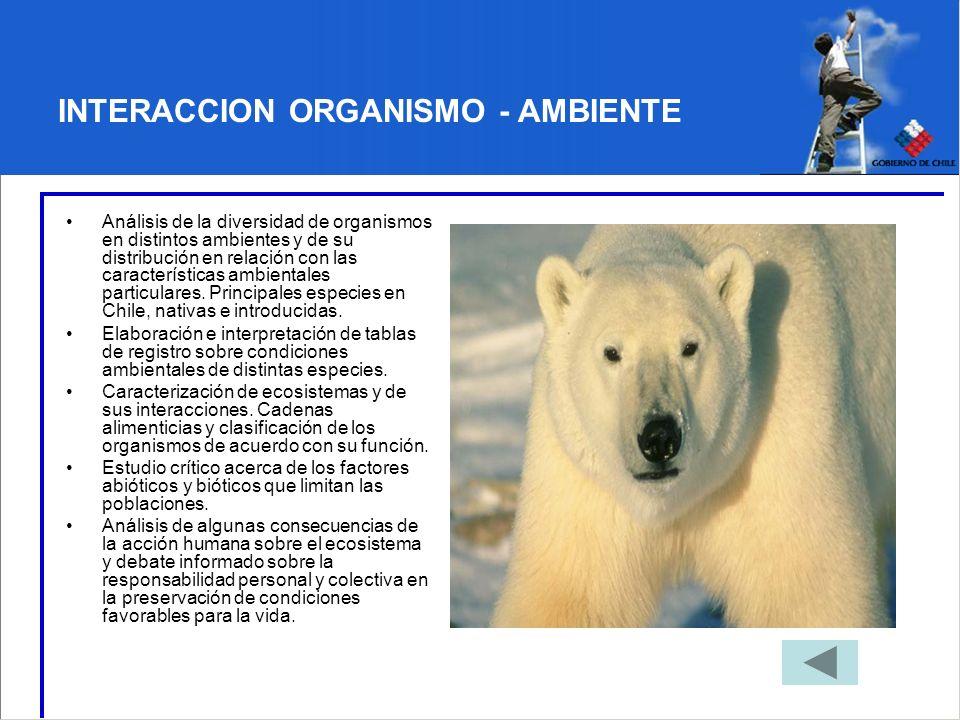 INTERACCION ORGANISMO - AMBIENTE Análisis de la diversidad de organismos en distintos ambientes y de su distribución en relación con las característic
