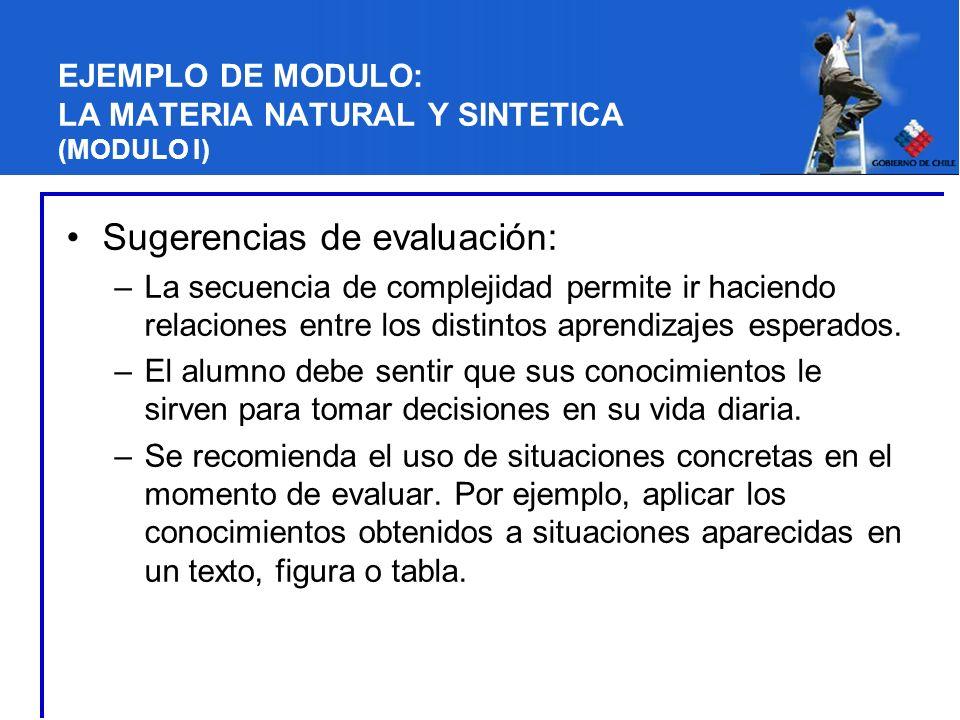 EJEMPLO DE MODULO: LA MATERIA NATURAL Y SINTETICA (MODULO I) Sugerencias de evaluación: –La secuencia de complejidad permite ir haciendo relaciones en