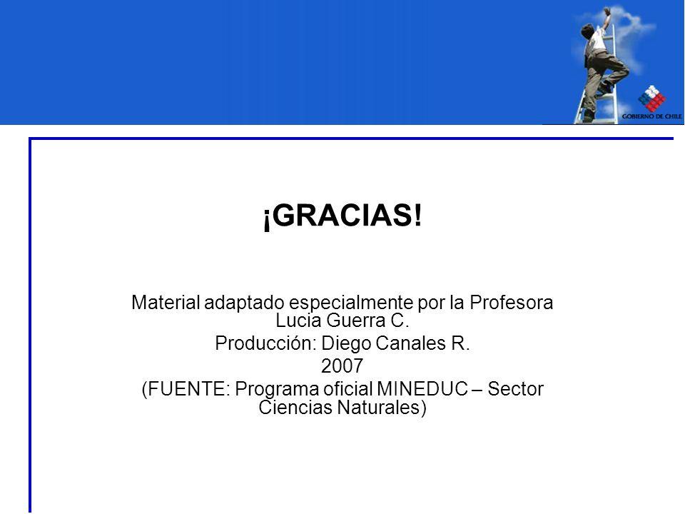 ¡GRACIAS! Material adaptado especialmente por la Profesora Lucia Guerra C. Producción: Diego Canales R. 2007 (FUENTE: Programa oficial MINEDUC – Secto