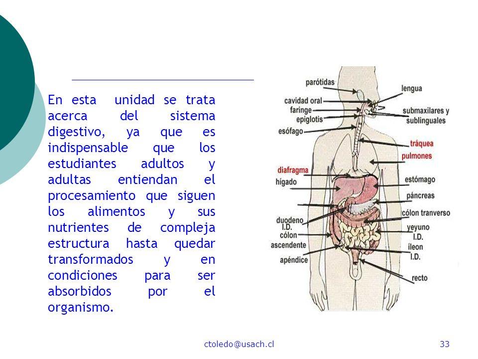 ctoledo@usach.cl33 En esta unidad se trata acerca del sistema digestivo, ya que es indispensable que los estudiantes adultos y adultas entiendan el pr