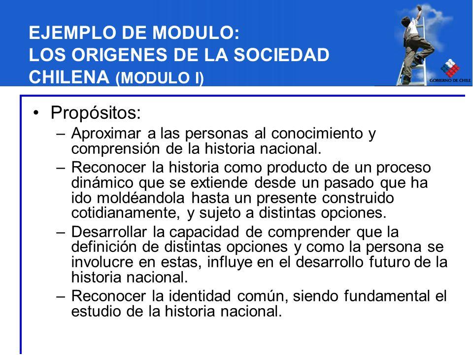 EJEMPLO DE MODULO: LOS ORIGENES DE LA SOCIEDAD CHILENA (MODULO I) Propósitos: –Aproximar a las personas al conocimiento y comprensión de la historia n