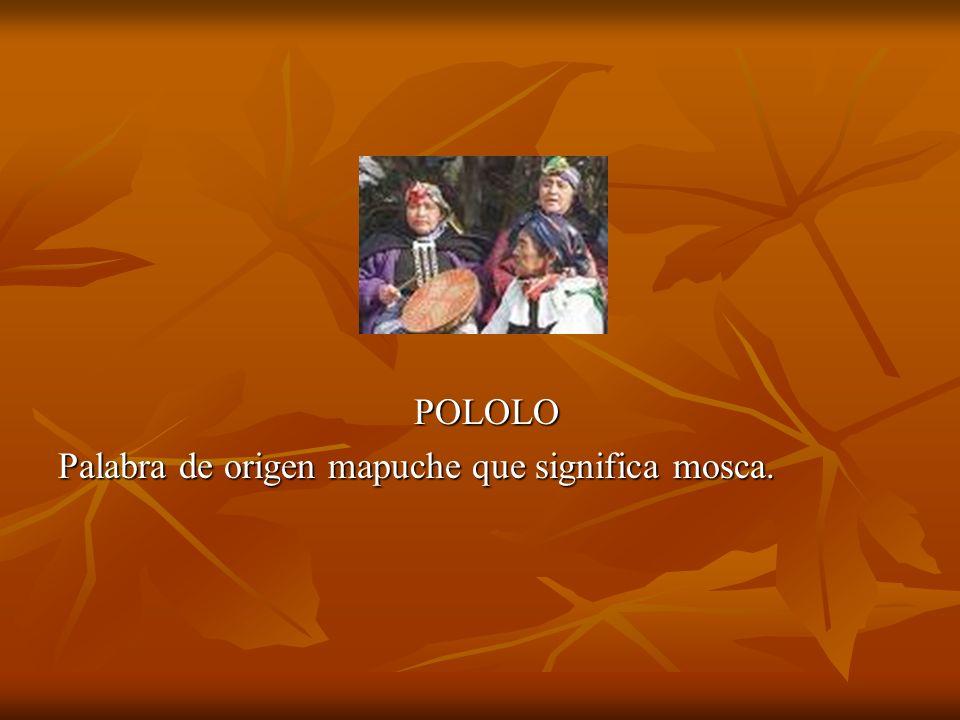 POLOLO Palabra de origen mapuche que significa mosca.