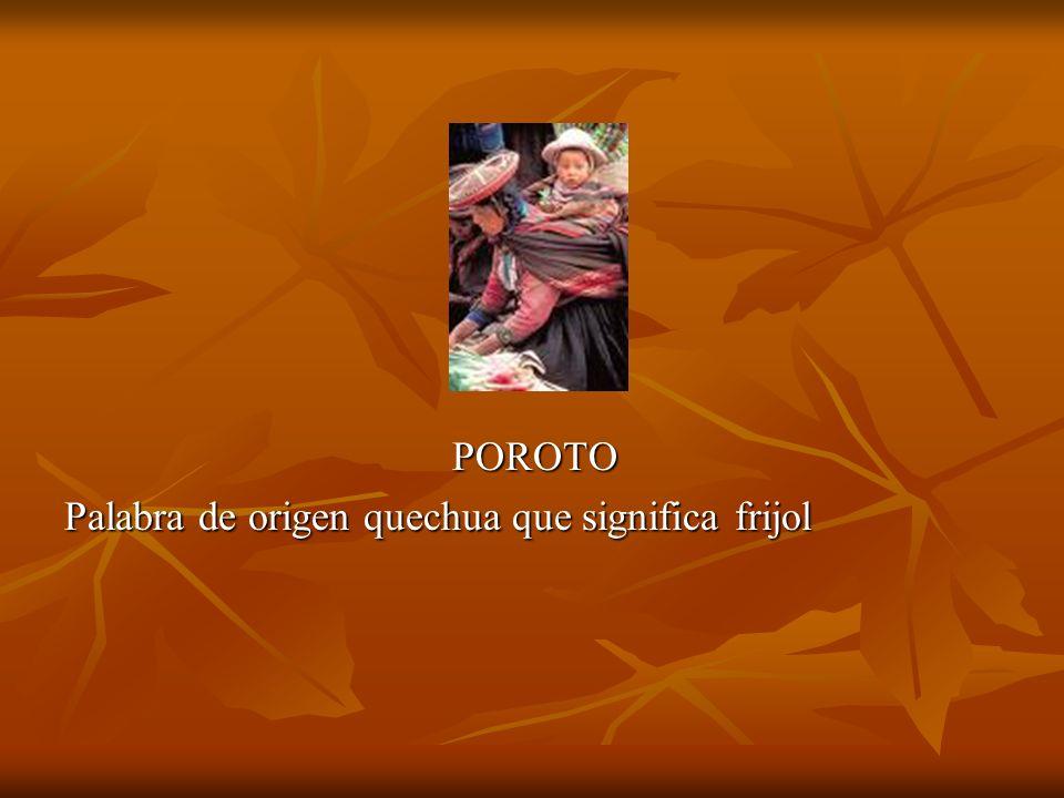 POROTO Palabra de origen quechua que significa frijol