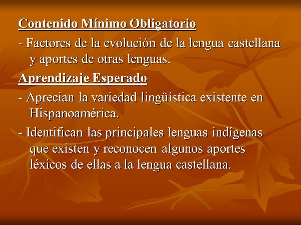 Contenido Mínimo Obligatorio - Factores de la evolución de la lengua castellana y aportes de otras lenguas. Aprendizaje Esperado - Aprecian la varieda