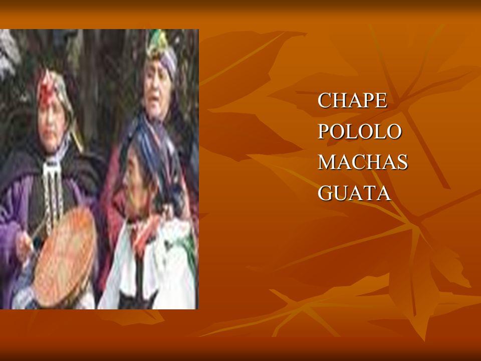 CHAPEPOLOLOMACHASGUATA