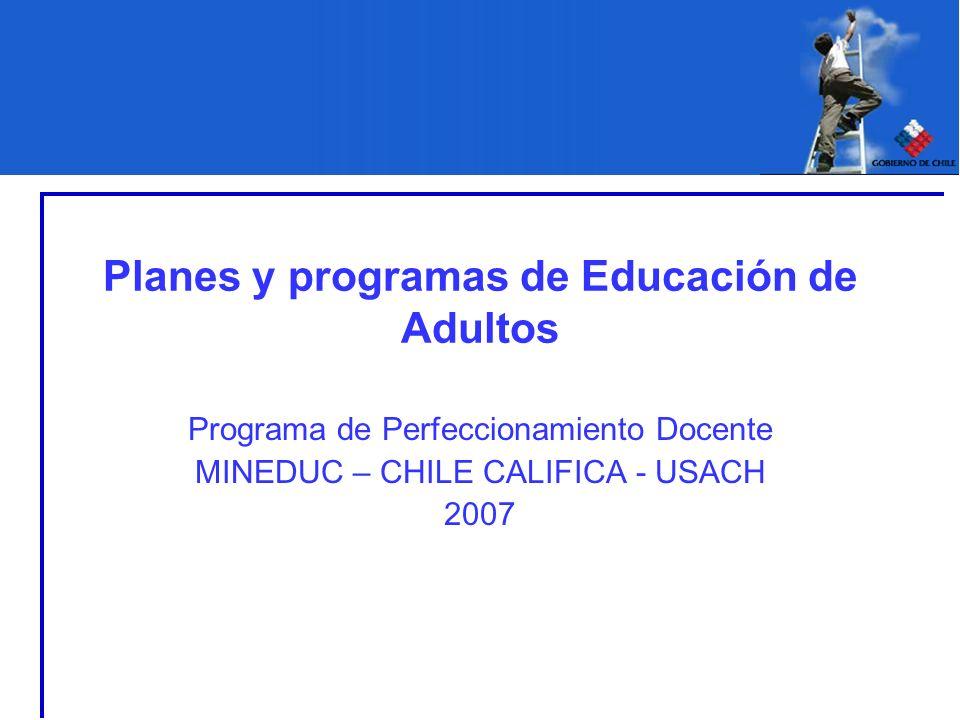 Planes y programas de Educación de Adultos Programa de Perfeccionamiento Docente MINEDUC – CHILE CALIFICA - USACH 2007
