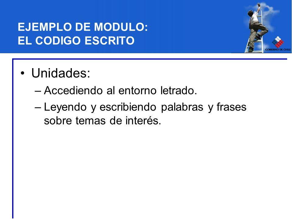 EJEMPLO DE MODULO: EL CODIGO ESCRITO Unidades: –Accediendo al entorno letrado.