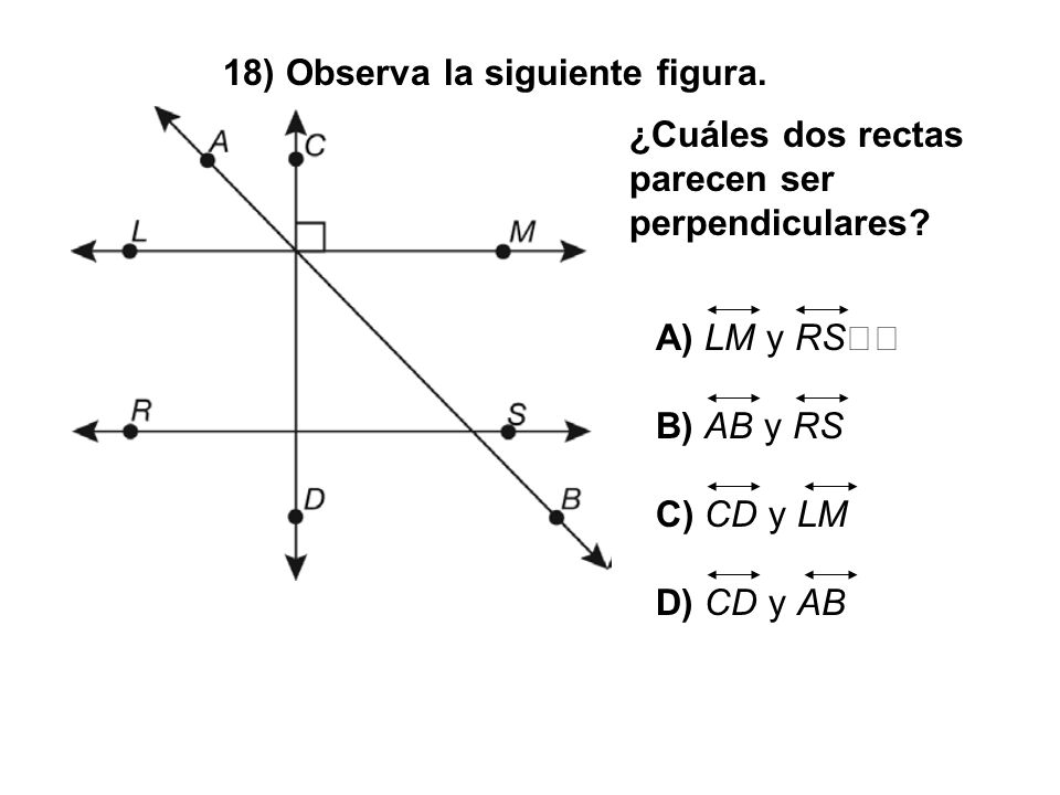 18) Observa la siguiente figura. ¿Cuáles dos rectas parecen ser perpendiculares? A) LM y RS B) AB y RS C) CD y LM D) CD y AB