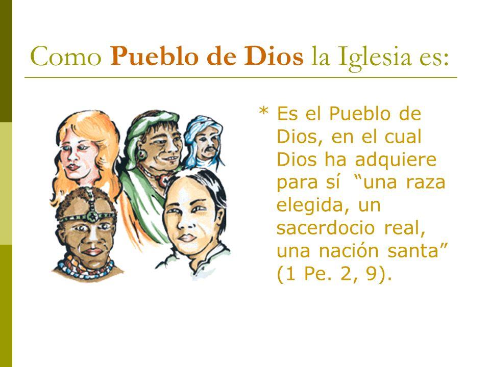 Como Pueblo de Dios la Iglesia es: * Es el Pueblo de Dios, en el cual Dios ha adquiere para sí una raza elegida, un sacerdocio real, una nación santa