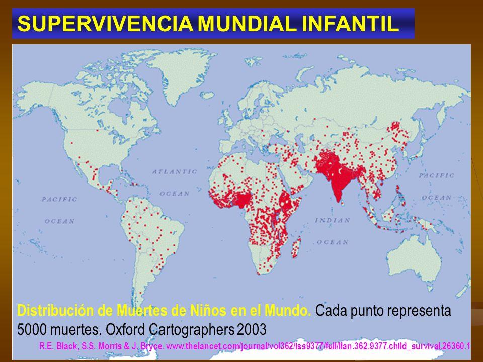 SUPERVIVENCIA MUNDIAL INFANTIL Distribución de Muertes de Niños en el Mundo. Cada punto representa 5000 muertes. Oxford Cartographers 2003 R.E. Black,