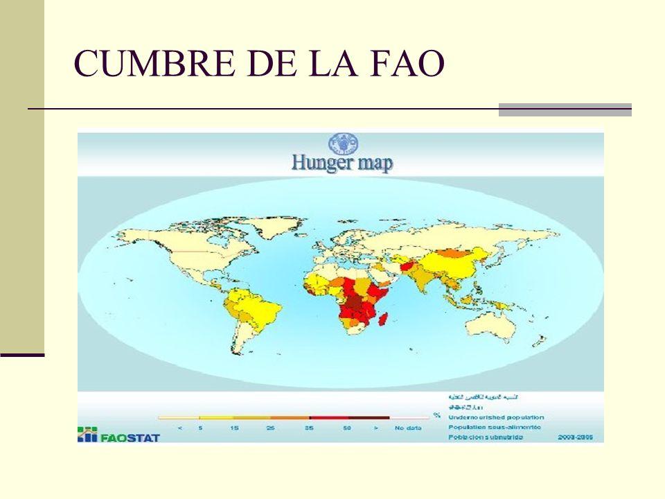 CUMBRE DE LA FAO