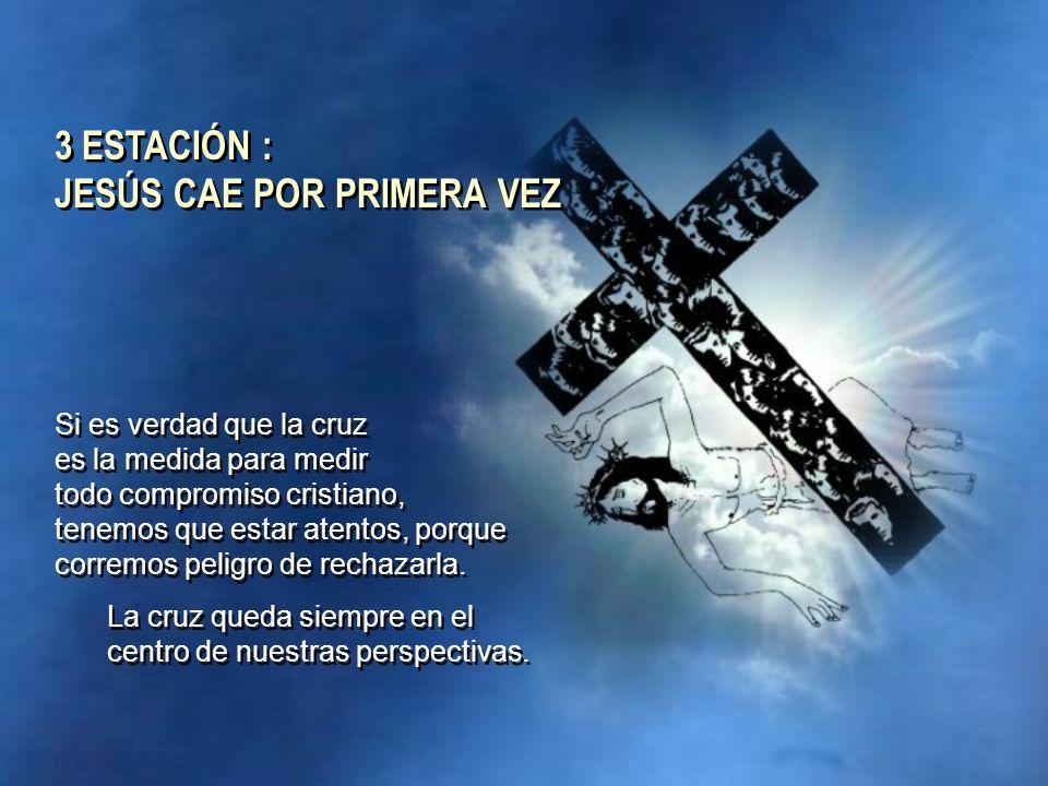 Si es verdad que la cruz es la medida para medir todo compromiso cristiano, tenemos que estar atentos, porque corremos peligro de rechazarla. La cruz