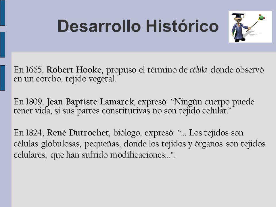 Desarrollo Histórico En 1665, Robert Hooke, propuso el término de célula donde observó en un corcho, tejido vegetal. En 1809, Jean Baptiste Lamarck, e