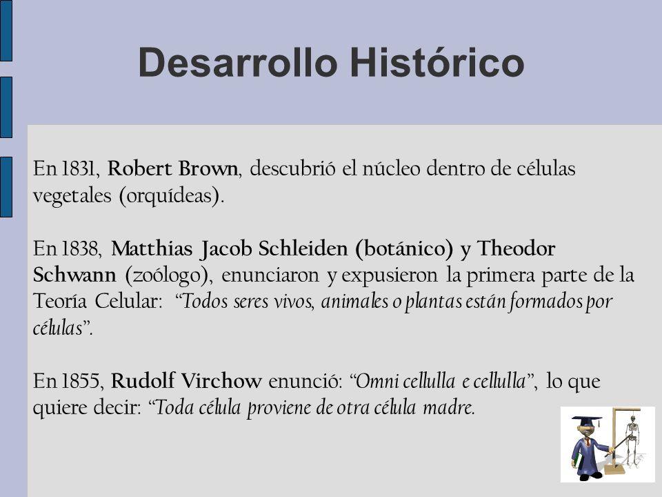 En 1831, Robert Brown, descubrió el núcleo dentro de células vegetales (orquídeas). En 1838, Matthias Jacob Schleiden (botánico) y Theodor Schwann (zo