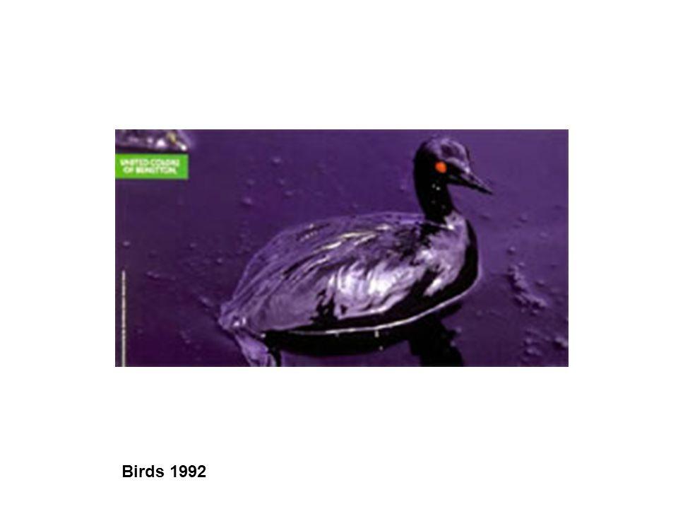 Birds 1992