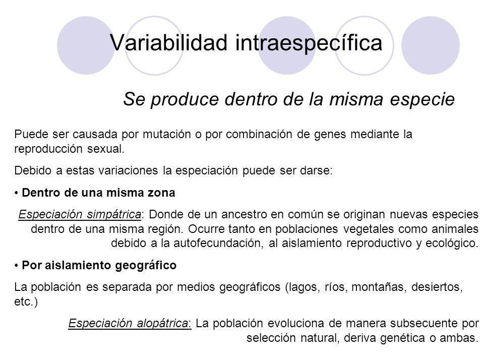 Variabilidad intraespecífica Factores ambientales: Frío, la sequedad, el calor, depredadores, parásitos, enfermedades, luz y otros, permiten el mecanismo de la SELECCIÓN NATURAL.