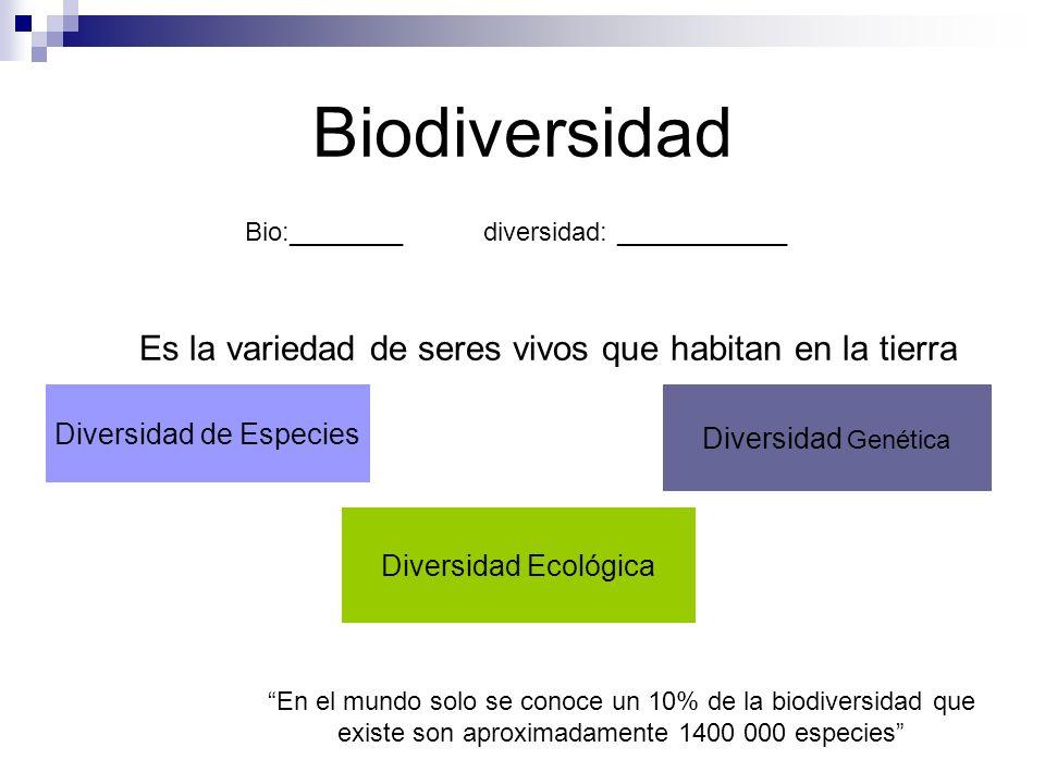 Biodiversidad Es la variedad de seres vivos que habitan en la tierra Diversidad de Especies Diversidad Genética Diversidad Ecológica Bio:________diversidad: ____________ En el mundo solo se conoce un 10% de la biodiversidad que existe son aproximadamente 1400 000 especies
