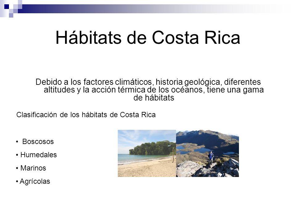 Hábitats de Costa Rica Debido a los factores climáticos, historia geológica, diferentes altitudes y la acción térmica de los océanos, tiene una gama de hábitats Clasificación de los hábitats de Costa Rica Boscosos Humedales Marinos Agrícolas