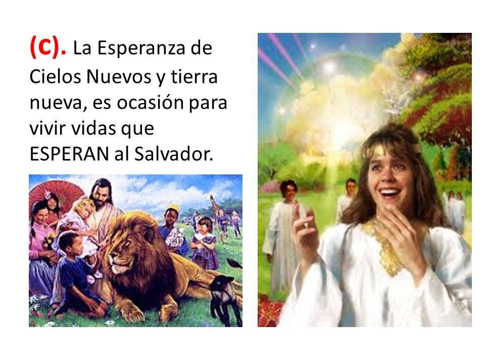 ( c ). La Esperanza de Cielos Nuevos y tierra nueva, es ocasión para vivir vidas que ESPERAN al Salvador.