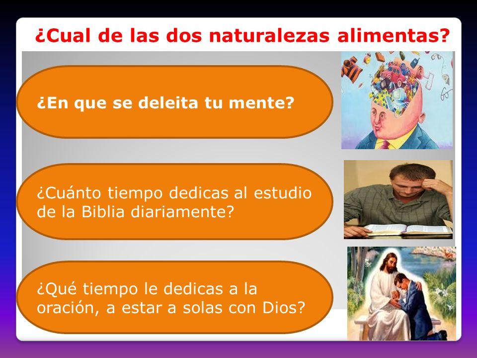 ¿En que se deleita tu mente? ¿Cuánto tiempo dedicas al estudio de la Biblia diariamente? ¿Qué tiempo le dedicas a la oración, a estar a solas con Dios