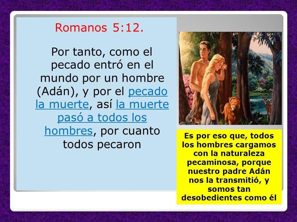 Romanos 5:12. Por tanto, como el pecado entró en el mundo por un hombre (Adán), y por el pecado la muerte, así la muerte pasó a todos los hombres, por