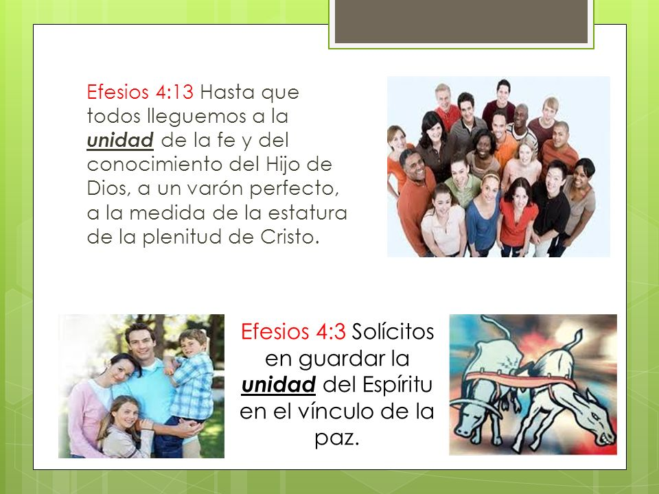Efesios 4:13 Hasta que todos lleguemos a la unidad de la fe y del conocimiento del Hijo de Dios, a un varón perfecto, a la medida de la estatura de la