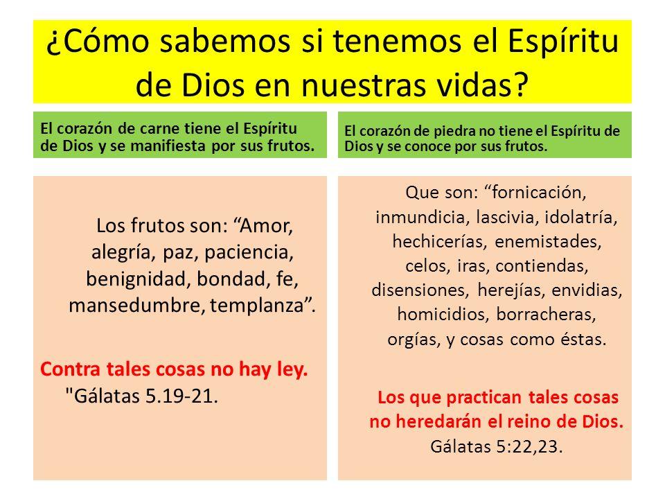 ¿Cómo sabemos si tenemos el Espíritu de Dios en nuestras vidas? El corazón de carne tiene el Espíritu de Dios y se manifiesta por sus frutos. Los frut