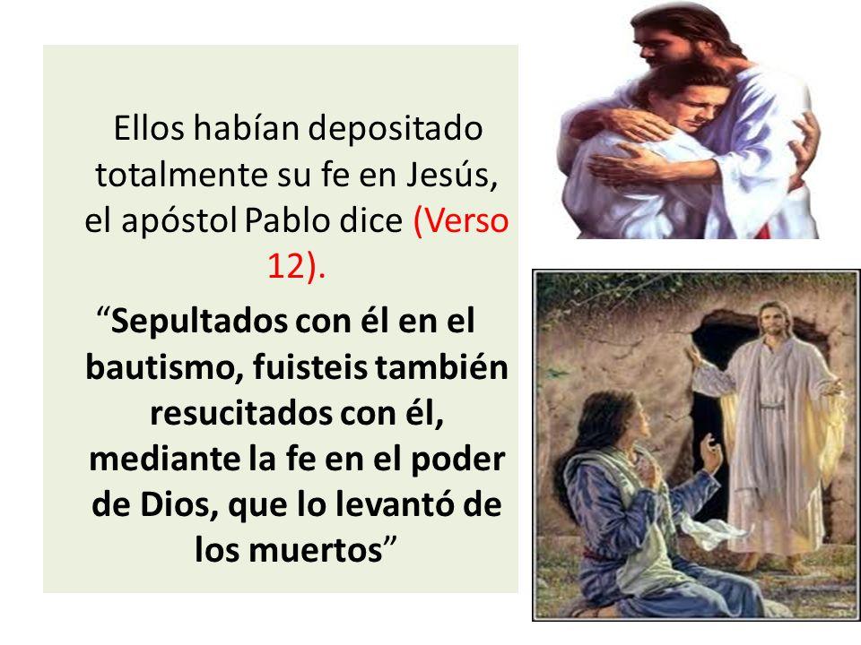 El Verso 11.