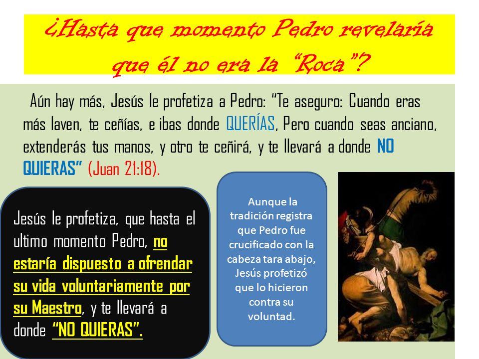 ¿Hasta que momento Pedro revelaría que él no era la Roca? Aún hay más, Jesús le profetiza a Pedro: Te aseguro: Cuando eras más laven, te ceñías, e iba