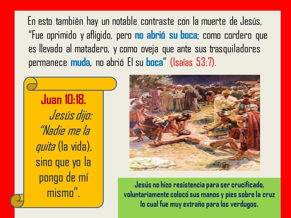 En esto también hay un notable contraste con la muerte de Jesús, Fue oprimido y afligido, pero no abrió su boca ; como cordero que es llevado al matad