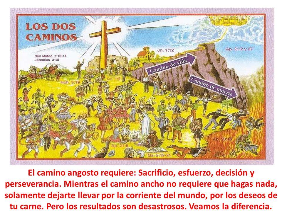 Un texto semejante al de Mateo 7:13,14, es el de Luc.