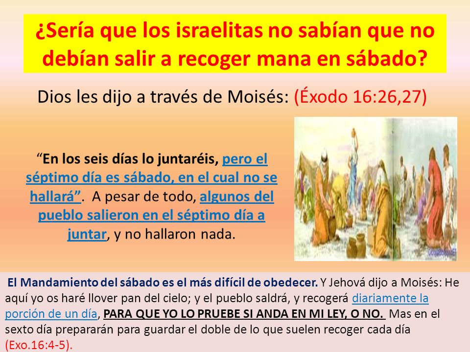 ¿Sería que los israelitas no sabían que no debían salir a recoger mana en sábado? Dios les dijo a través de Moisés: (Éxodo 16:26,27) En los seis días