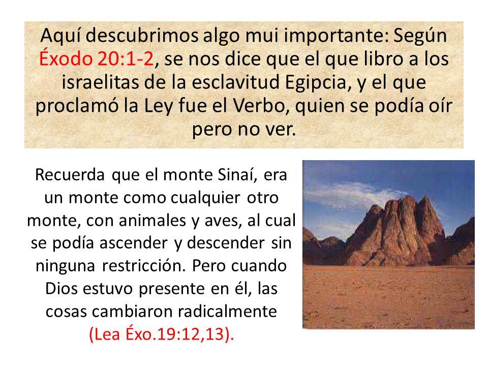 Aquí descubrimos algo mui importante: Según Éxodo 20:1-2, se nos dice que el que libro a los israelitas de la esclavitud Egipcia, y el que proclamó la