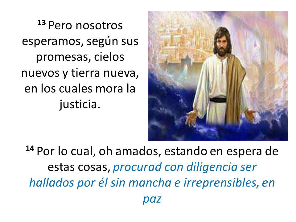 13 Pero nosotros esperamos, según sus promesas, cielos nuevos y tierra nueva, en los cuales mora la justicia. 14 Por lo cual, oh amados, estando en es