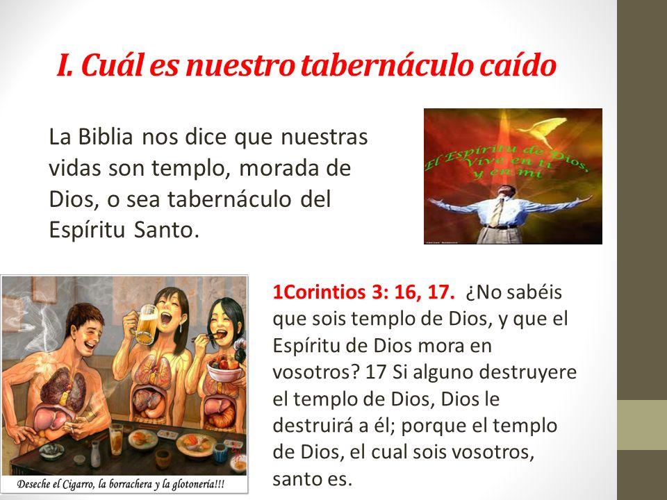 I. Cuál es nuestro tabernáculo caído La Biblia nos dice que nuestras vidas son templo, morada de Dios, o sea tabernáculo del Espíritu Santo. 1Corintio