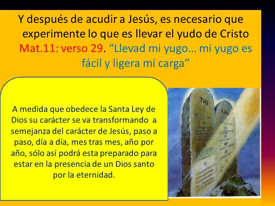 Y después de acudir a Jesús, es necesario que experimente lo que es llevar el yudo de Cristo Mat.11: verso 29. Llevad mi yugo… mi yugo es fácil y lige