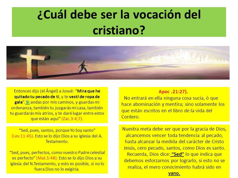 ¿Cuál debe ser la vocación del cristiano? Sed, pues, santos, porque Yo Soy santo (Lev.11:45). Esto se lo dijo Dios a su iglesia del A. Testamento. Sed
