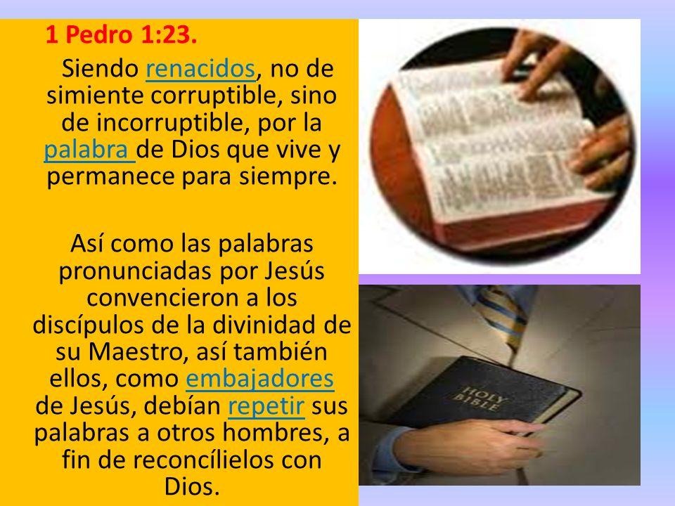 1 Pedro 1:23. Siendo renacidos, no de simiente corruptible, sino de incorruptible, por la palabra de Dios que vive y permanece para siempre. Así como