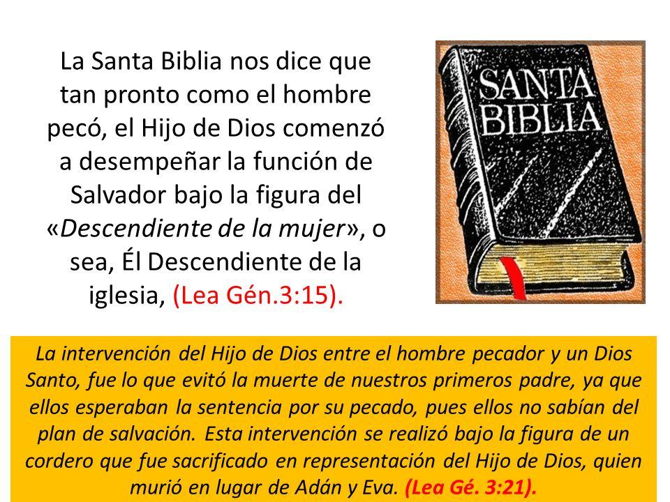 La Santa Biblia nos dice que tan pronto como el hombre pecó, el Hijo de Dios comenzó a desempeñar la función de Salvador bajo la figura del «Descendie